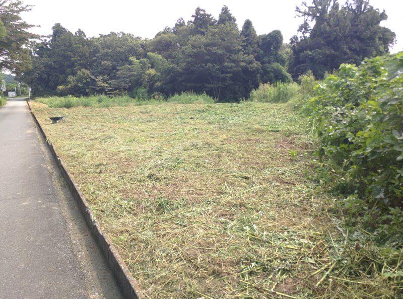 草刈り後の夏の畑